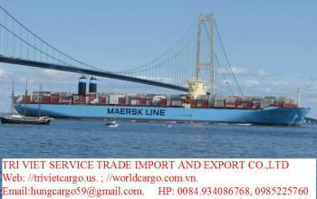 tri-viet-cargo-0084-9389-14-368-air-freight-charge-sea-freight-charge-couries-serv