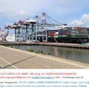 Shipping companies,Airfreight,Courier services,Forwarding,Heavy transport,Inland shipping